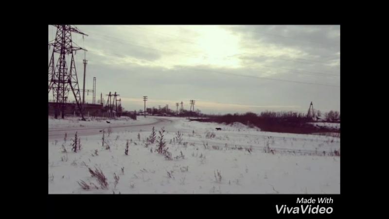 XiaoYing_Video_1517403504067.mp4
