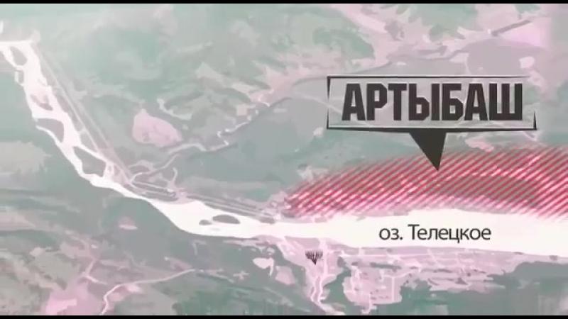Черные лесорубы на Алтае заставили выйти на митинг в Новосибирске