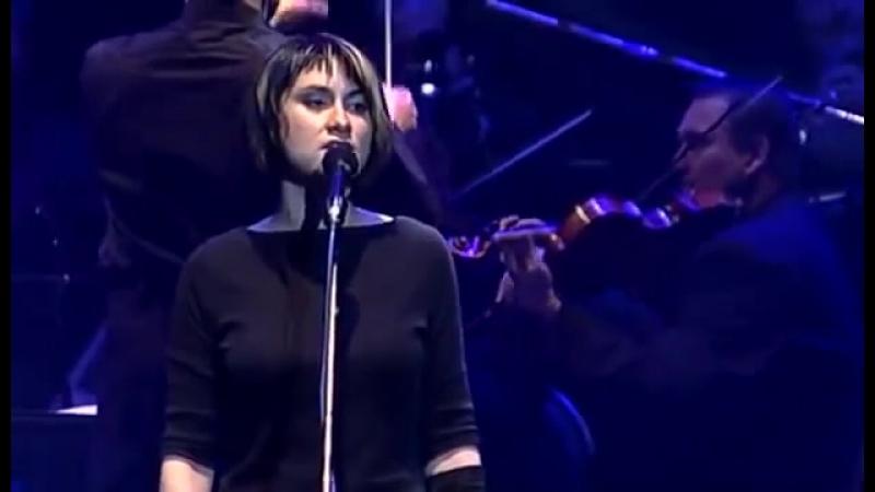 Cechomor - Promeny live (Nejlepší české písničky Best Czech songs)