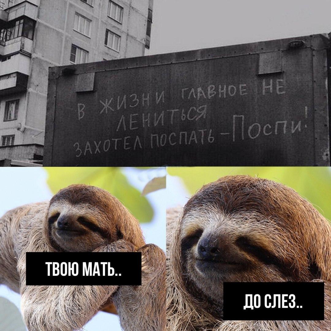 Открытки поржать до слез, картинки русские идут