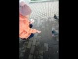 Ангелина и голуби