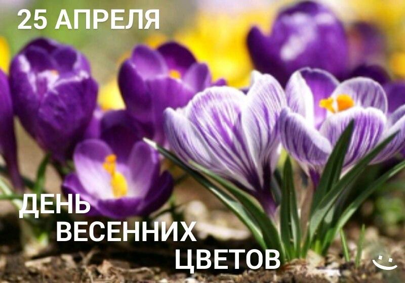 https://pp.userapi.com/c834203/v834203677/124d00/GB0f5CAbJdU.jpg