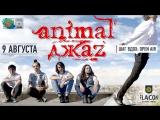 09.08. Animal Jazz. Шаг Вдох Open Air. 16+