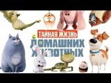 Тайная жизнь домашних животных (2016) мультфильм, комедия, приключения
