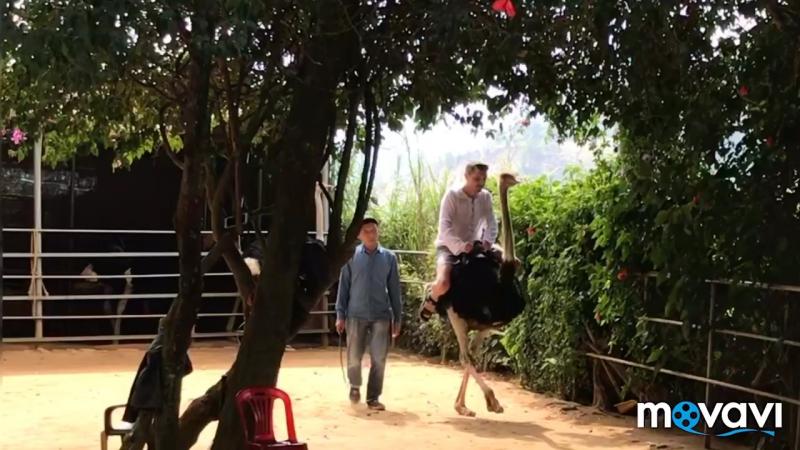 Отпуск во Вьетнаме, Муине