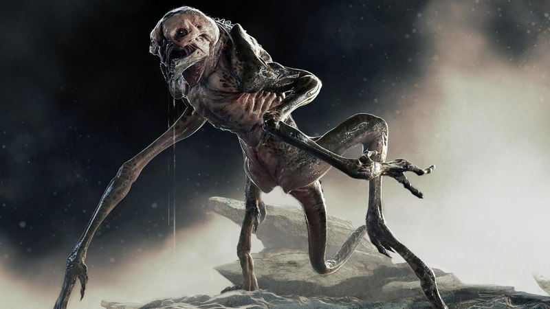 Загадочное существо расправилось с от рядом с пец наза в Индии.Монстры из пробирки.Территория загадо
