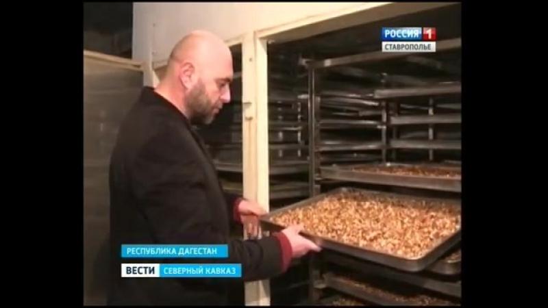 Национальное Кавказское блюдо - Урбеч (респ. Дагестан)
