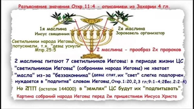 Два последних пророка из (Откр.11:3-6)