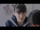 11E_50B_ТВ-передача Maidigi о рекламе Panapp