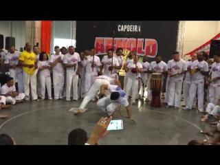 Abadá Capoeira - Jogos Arnold 2018... - Professor PapagaioxErick