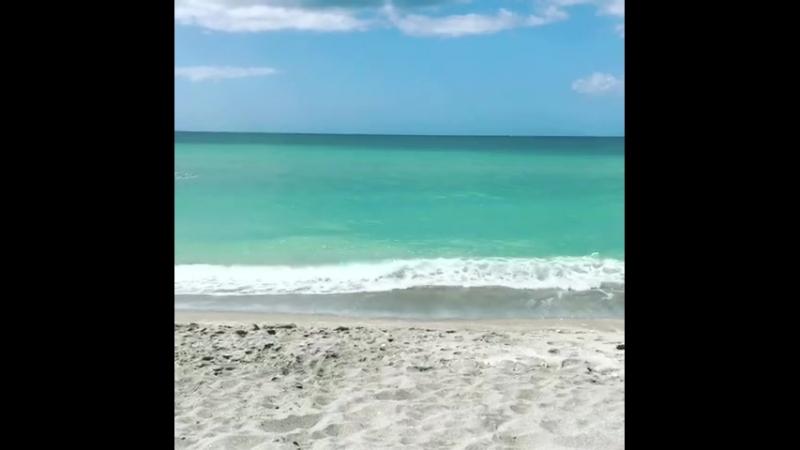 Turtle Beach, SW Florida