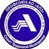 """ПРОФСОЮЗ - СТМ АО """"АПЗ им. П.И. Пландина"""""""