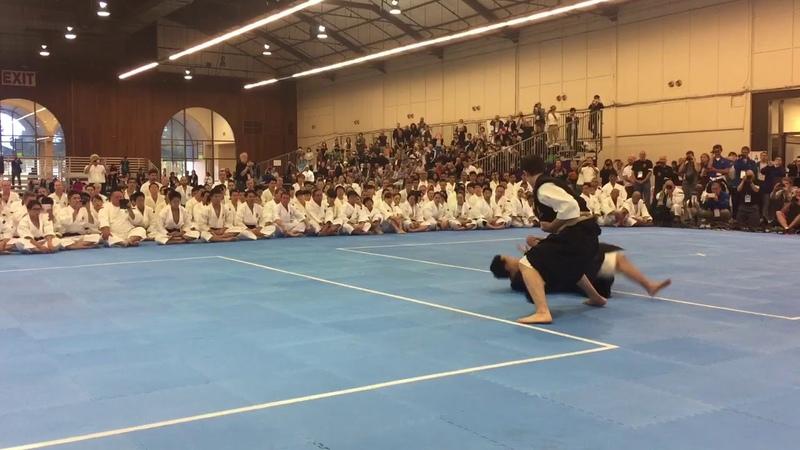 2017 Shorinji Kempo International Taikai Kumi Embu Performance