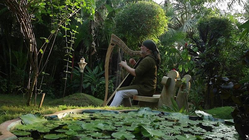 Alizbar Celtic Harp Indian Dream