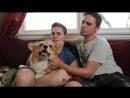Странные вещи, которые делают гей-пары / Weird Things Gay Couples Do (русские субтитры)