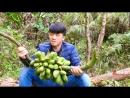 КИТАЙСКИЕ УЛОВКИ Как достать бананы ХоДэ СянЦзяо и мочалку из тыквы Люфа СыГуа Жан