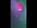 Соня Краусхофер Persephone Lame Immortelle Dark Acoustic Festival 21 04 2018 Арт клуб Теплый Ламповый