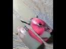 Мои отработки с курса @kuznecova_paris Райские птицы Юлия, огромное Вам спасибо!👩🏽🎨💅🏼 кузнецова_online parisnail