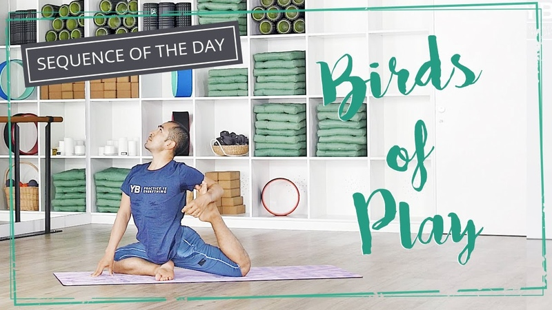 Bird of Play - Yoga Sequence of the Day | YOGABODY®