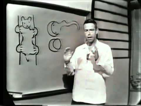 Alan Watts Buddhism and Science (1960) [full length]