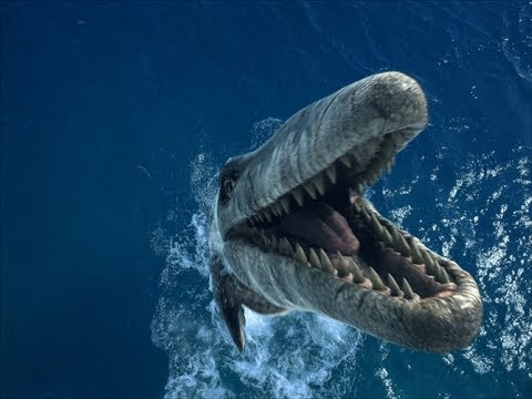 Легенды о нем слагают со времен Геродота.Монстры подводного мира.Территория загадок