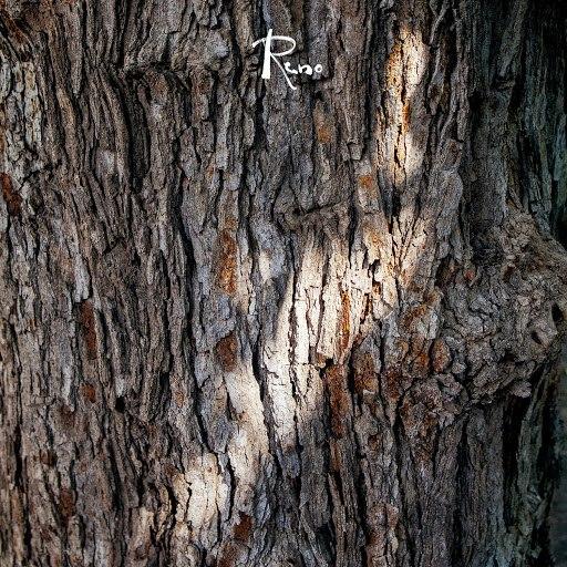 RENO альбом Reno