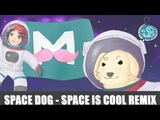 SPACE IS COOL + BoatPunkGhost dog Markiplier strings remix