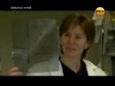 Обманутые наукой РенТВ 03.2012