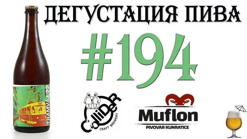 Дегустация пива 194 - имперский стаут Tramvaj 22 от Collider brewery и Kunratice Muflon! 18