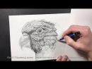 Полный Курс По Рисованию: От Начального до Продвинутого Уровня