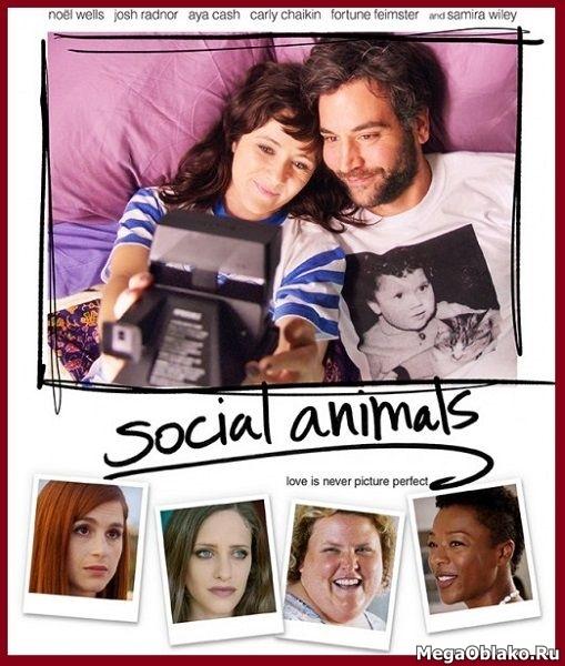 Погоня за любовью / Social Animals (2018/WEB-DL/WEB-DLRip)
