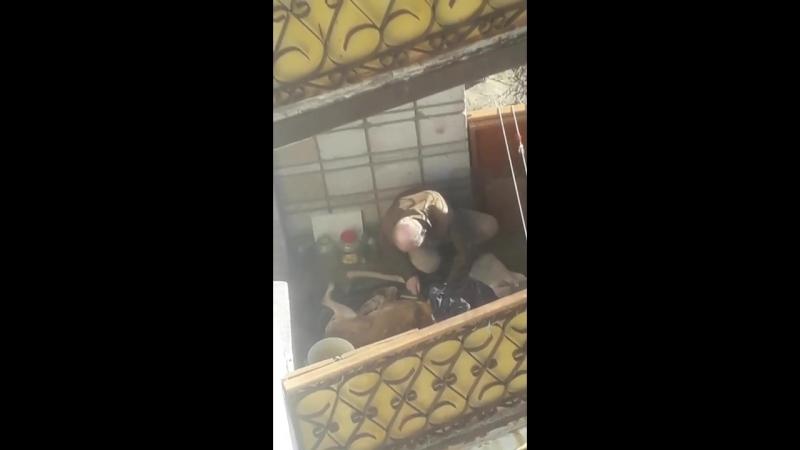 Город Нижняя Тура. Очевидцы засняли, как мужчина на балконе разделывал собаку.