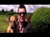 Рик Эстли и его собака