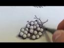 Рисуем виноград отличная тренировка в штриховке и рисовании кругов