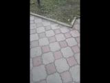 Юля Тихомирова - Live