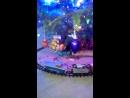 Наш новогодний полярный экспресс
