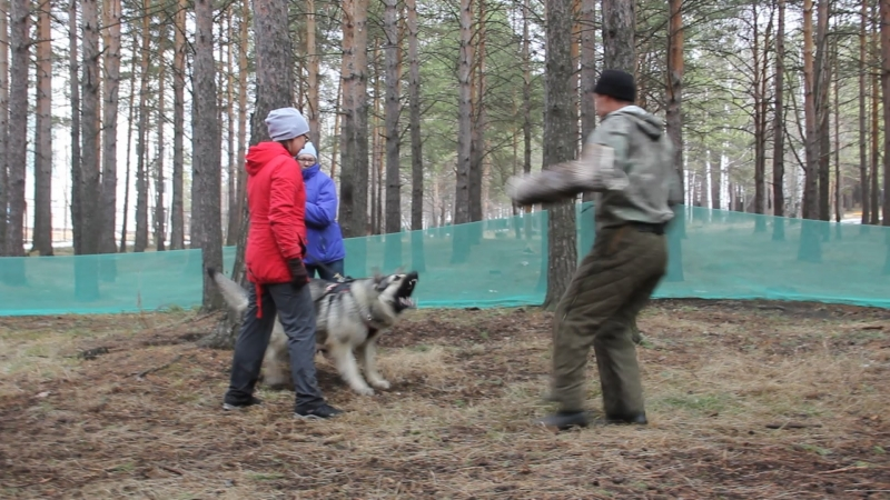 Тренинг по защите в Первоуральске. ВЕО. СУ Ювелир...8949
