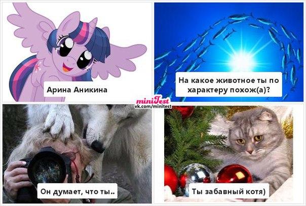 Фото №456239639 со страницы Арины Аникиной