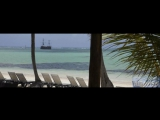 Discover the amazing Barceló Bávaro Beach Resort - Barceló Hotel Group