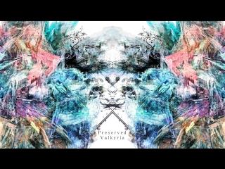 penoreri - Preserved Valkyria [Zexous Insane] - 2 plays comparison