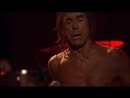 N°10 - Iggy and The Stooges -Open up and bleed (Live Pression Live au Casino de Paris 2012)