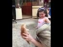 Котёнок по имени Цап царап
