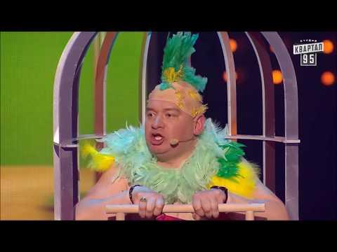 Это даже не до слез это просто обоссаться от смеха Квартал 95 Порвали попугаем зал в клочья