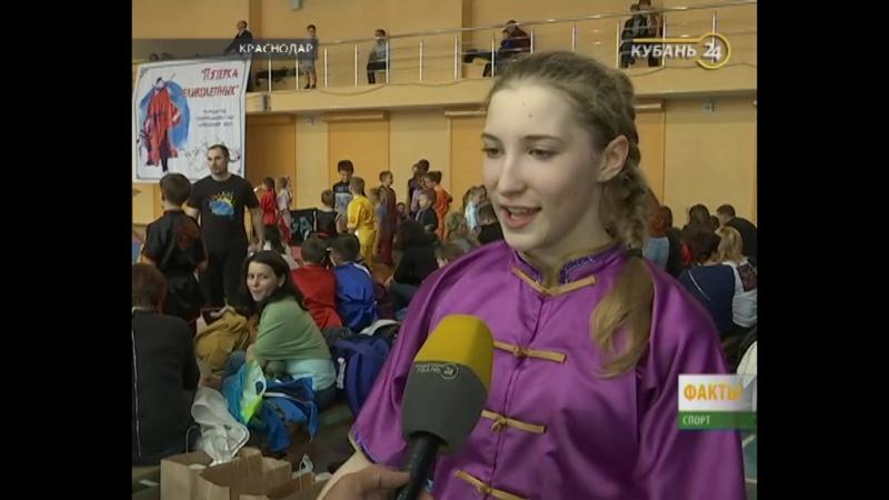 Кубань 24 - В Краснодаре прошел турнир по спортивному ушу «Пятерка великолепных»