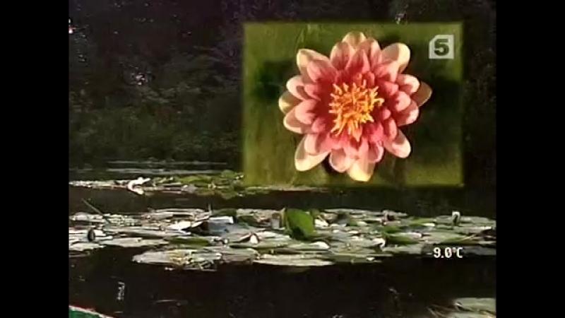 25 Palettes Claude Monet Цветное мгновение