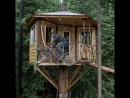 Когда все достало... можно построить домик в темном лесу
