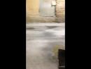 Рома Кондратьев — Live