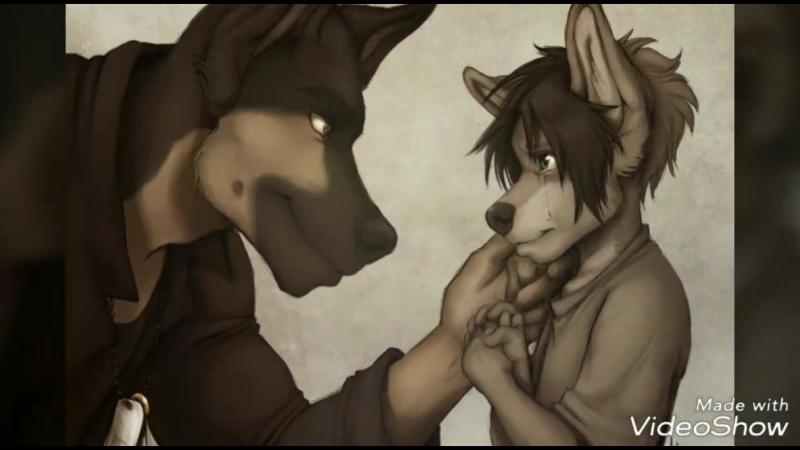 Спайк, или история одного волка
