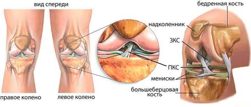 Реферат на тему реабилитация после травмы плечевого сустава мрт коленного сустава побочные явления