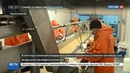 Новости на Россия 24 • На Чукотке в рыболовных сетях кету теснит горбуша